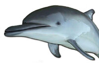 Fiberglass natural color custom-painted porpoise